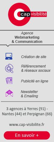 Cap Visibilité : agence web Paris Nantes Perpignan